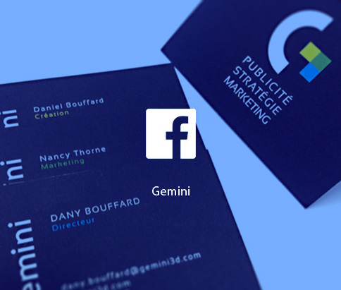 facebook_gemini_business